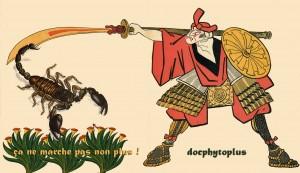 phytoscorpion
