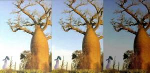 baobablarge