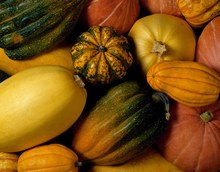 courges_H123213_L