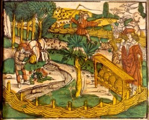 apiculture-en-alsace-medicinarius-1509-das-buch-der-gesundheit-...-de-m.-ficinus.-strasbourg-j.-grueninger-1509.-wikimedia-commons-1536x1232